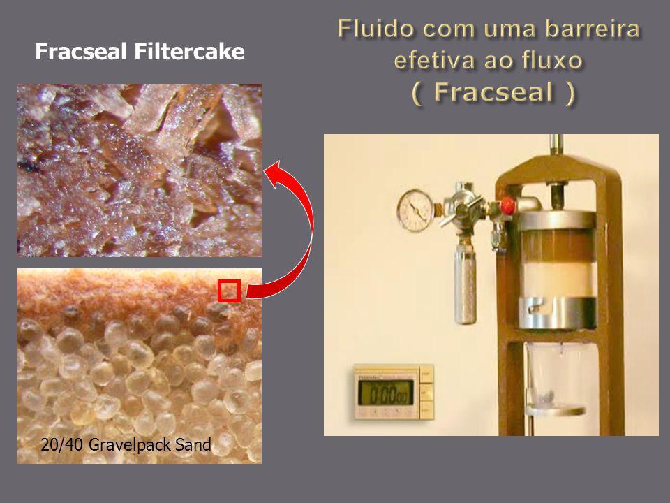 Fluido com uma barreira efetiva ao fluxo ( Fracseal )