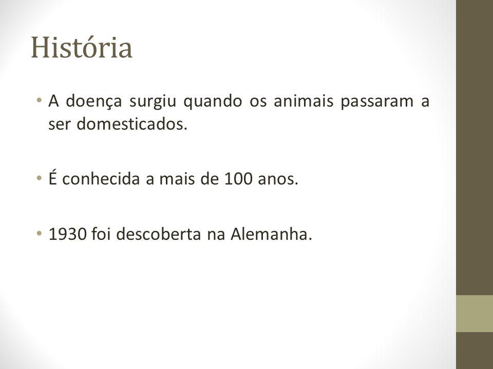 História A doença surgiu quando os animais passaram a ser domesticados. É conhecida a mais de 100 anos.