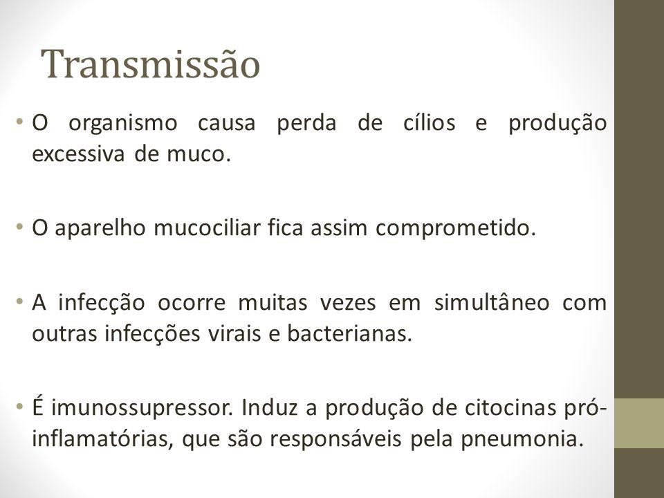 Transmissão O organismo causa perda de cílios e produção excessiva de muco. O aparelho mucociliar fica assim comprometido.