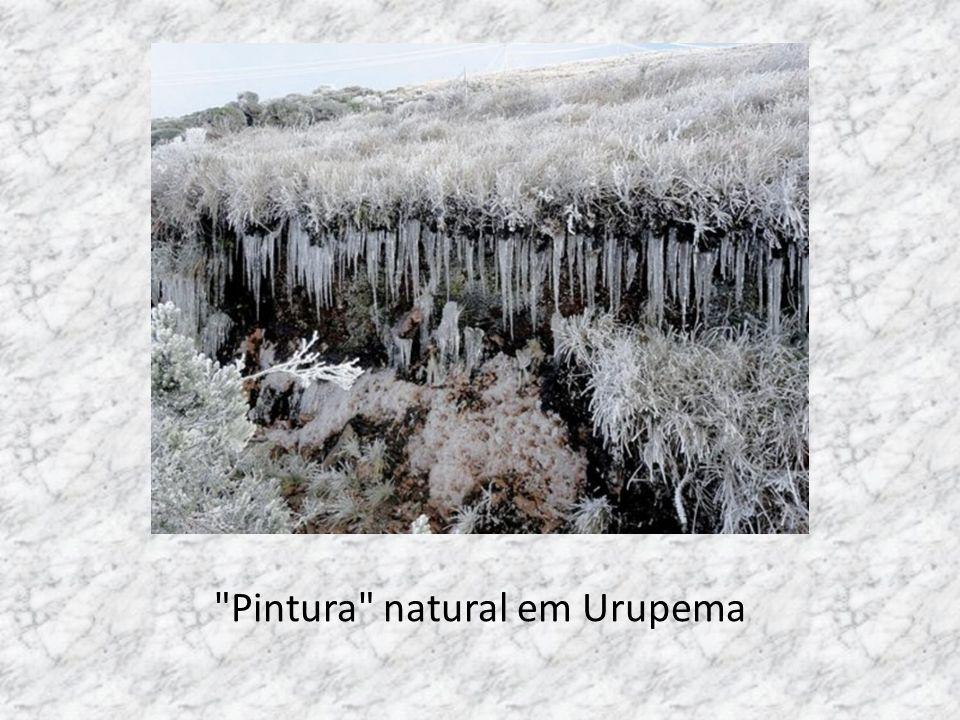 Pintura natural em Urupema