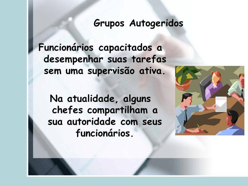 Grupos Autogeridos Funcionários capacitados a desempenhar suas tarefas sem uma supervisão ativa.