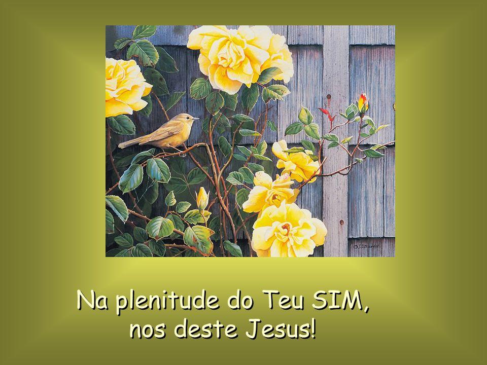 Na plenitude do Teu SIM, nos deste Jesus!