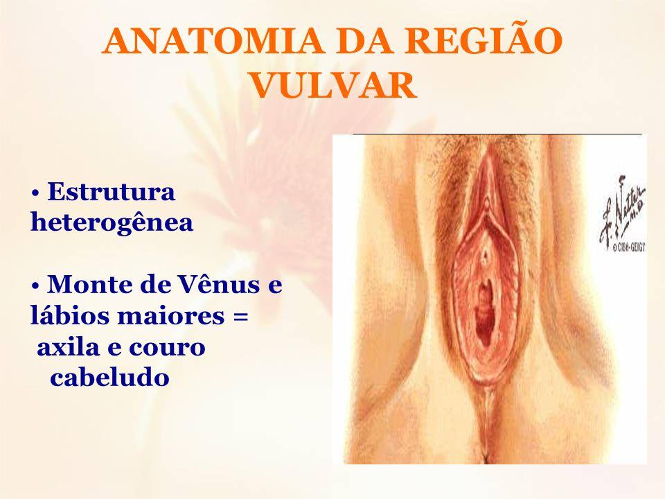 ANATOMIA DA REGIÃO VULVAR