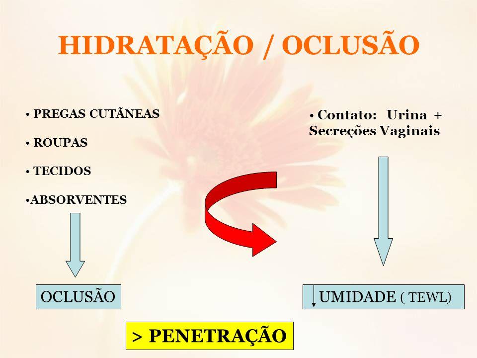 HIDRATAÇÃO / OCLUSÃO > PENETRAÇÃO OCLUSÃO UMIDADE ( TEWL)