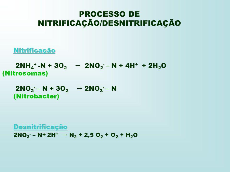 PROCESSO DE NITRIFICAÇÃO/DESNITRIFICAÇÃO