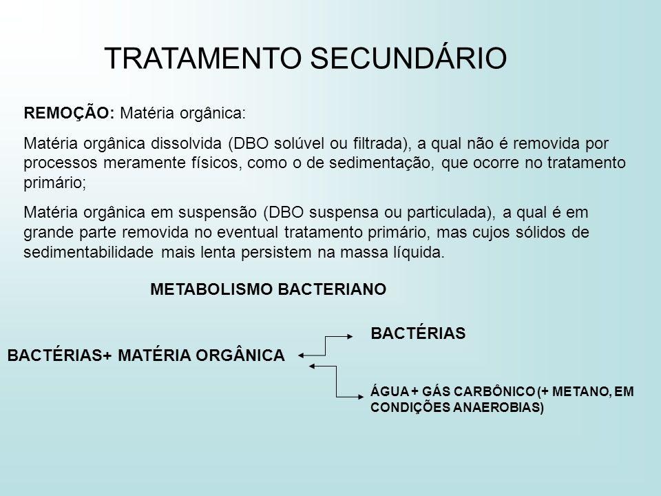 TRATAMENTO SECUNDÁRIO