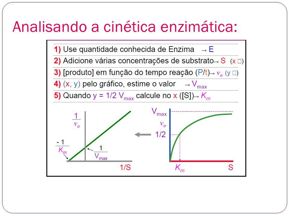 Analisando a cinética enzimática: