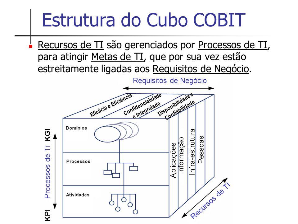 Estrutura do Cubo COBIT