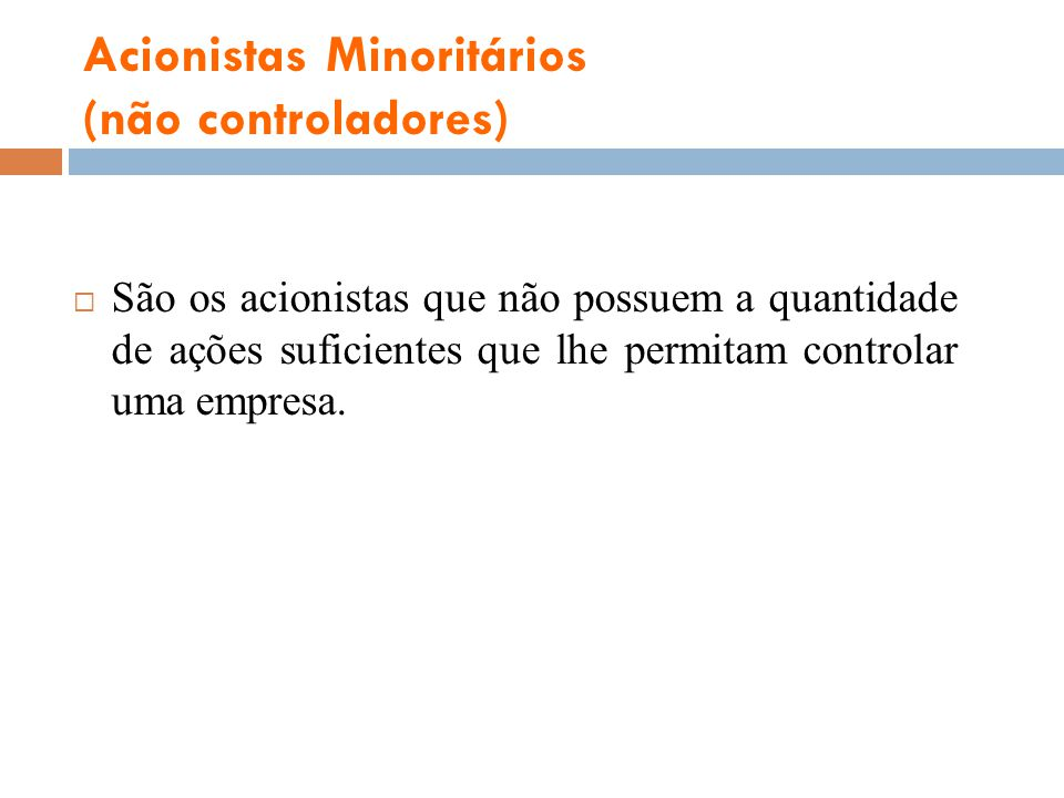 Acionistas Minoritários (não controladores)