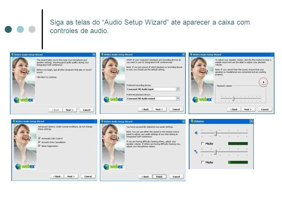 Siga as telas do Audio Setup Wizard ate aparecer a caixa com controles de audio.