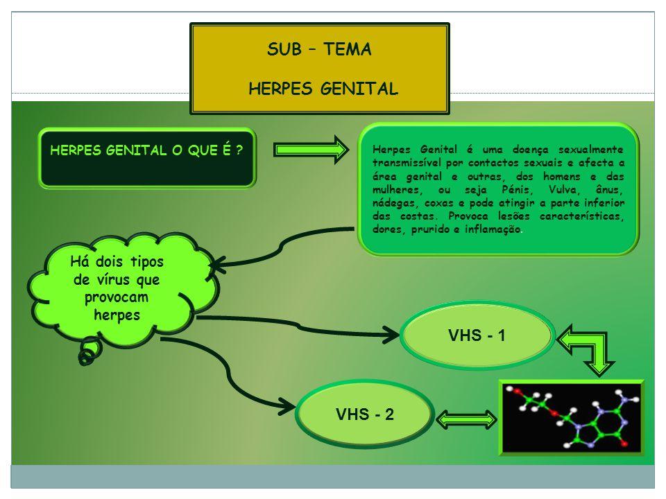 Há dois tipos de vírus que provocam herpes