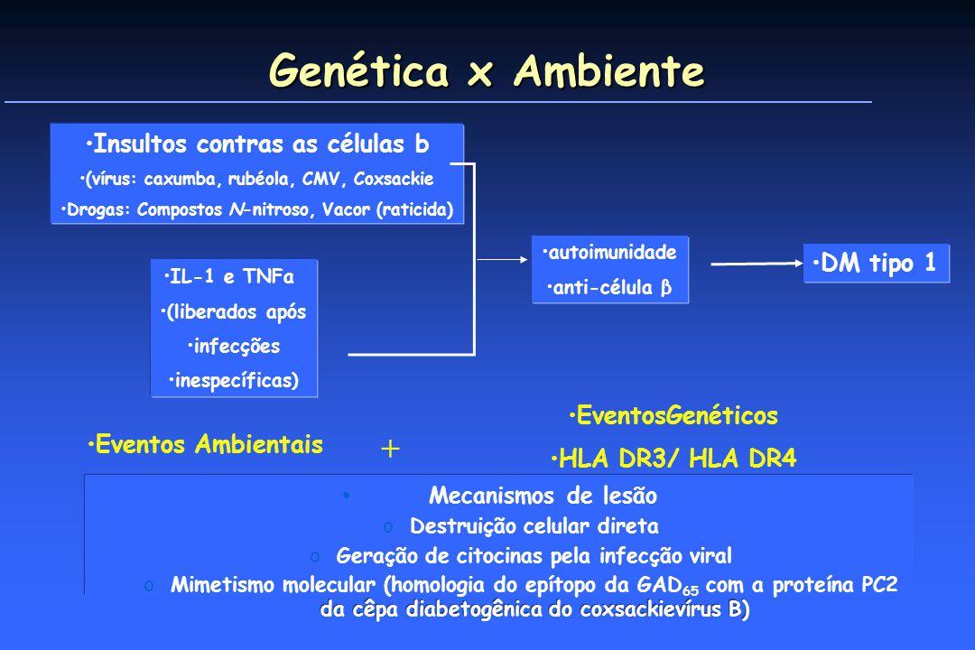 Genética x Ambiente + Insultos contras as células b DM tipo 1