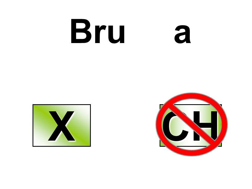Bru a X CH