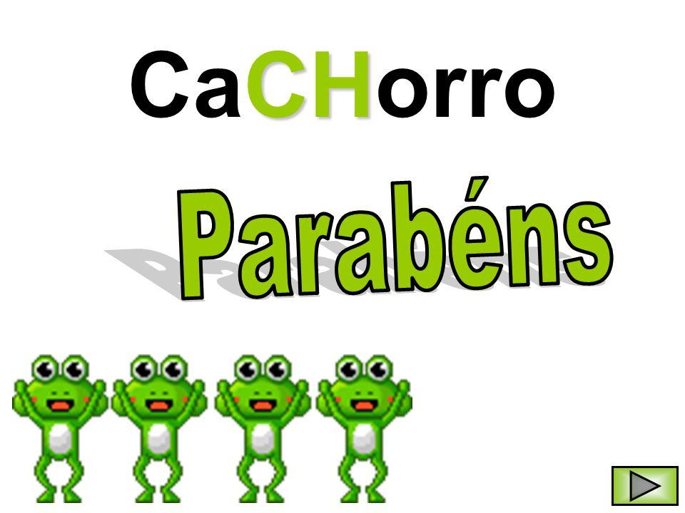 CaCHorro Parabéns