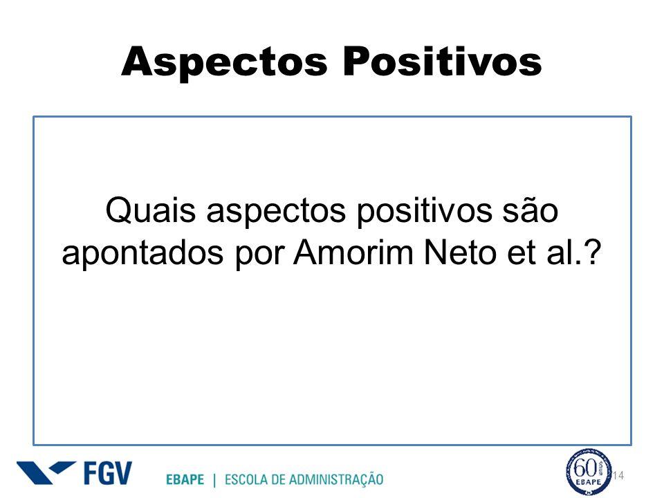 Quais aspectos positivos são apontados por Amorim Neto et al.