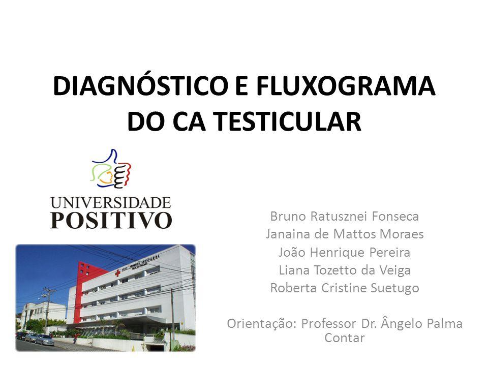 DIAGNÓSTICO E FLUXOGRAMA DO CA TESTICULAR