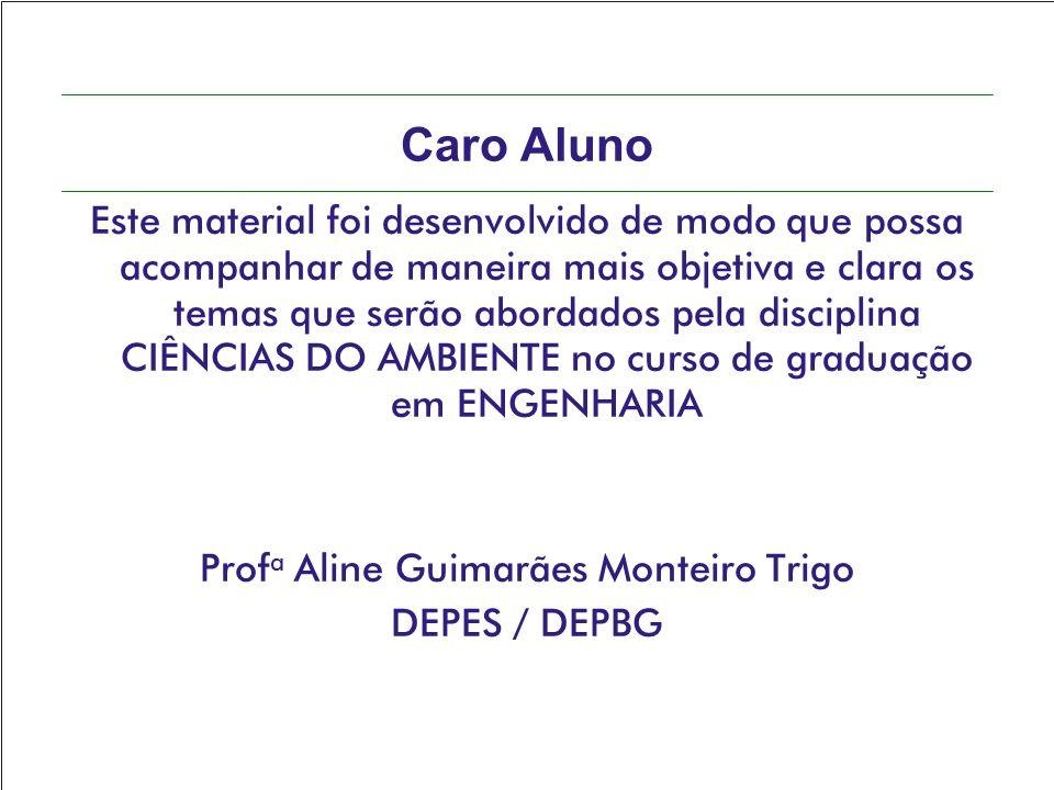 Profa Aline Guimarães Monteiro Trigo