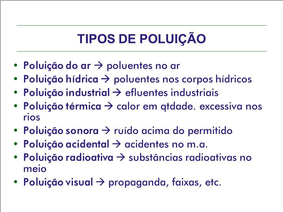 TIPOS DE POLUIÇÃO Poluição do ar  poluentes no ar