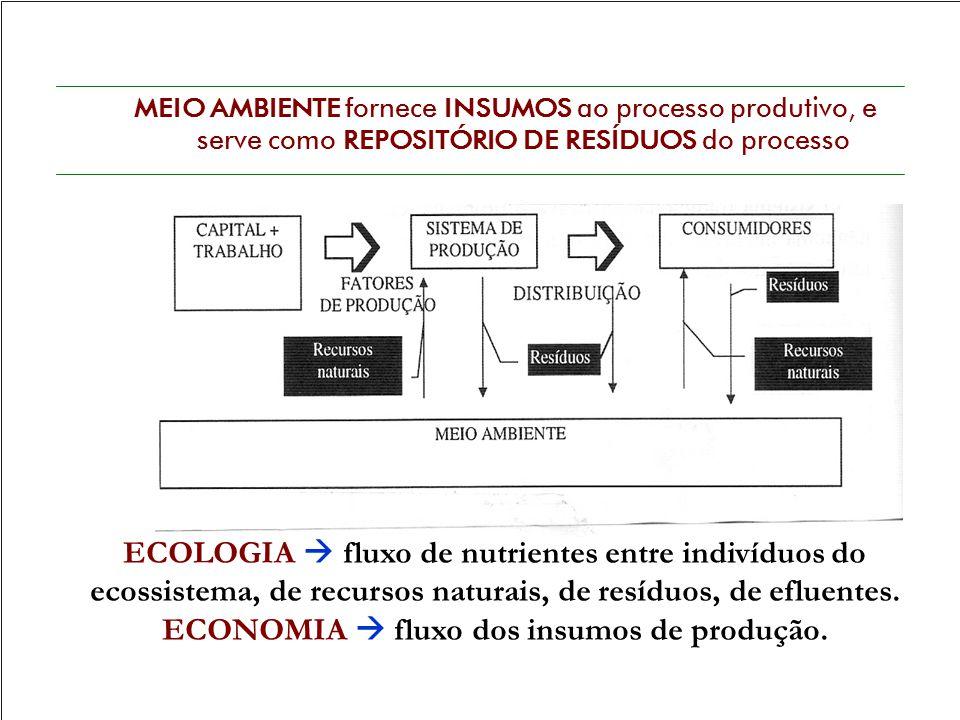 ECONOMIA  fluxo dos insumos de produção.