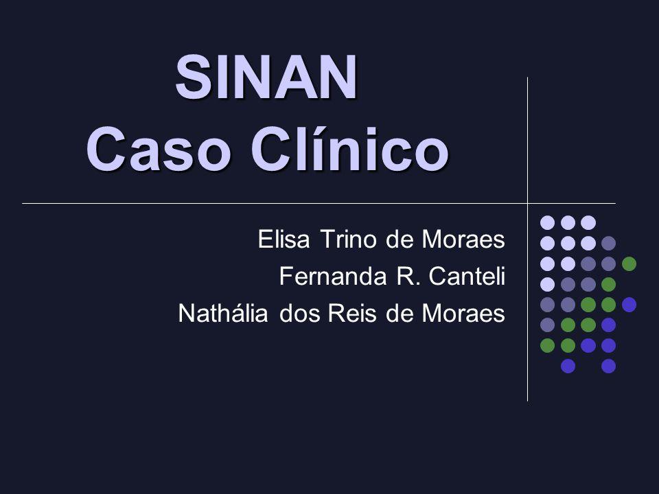 Elisa Trino de Moraes Fernanda R. Canteli Nathália dos Reis de Moraes