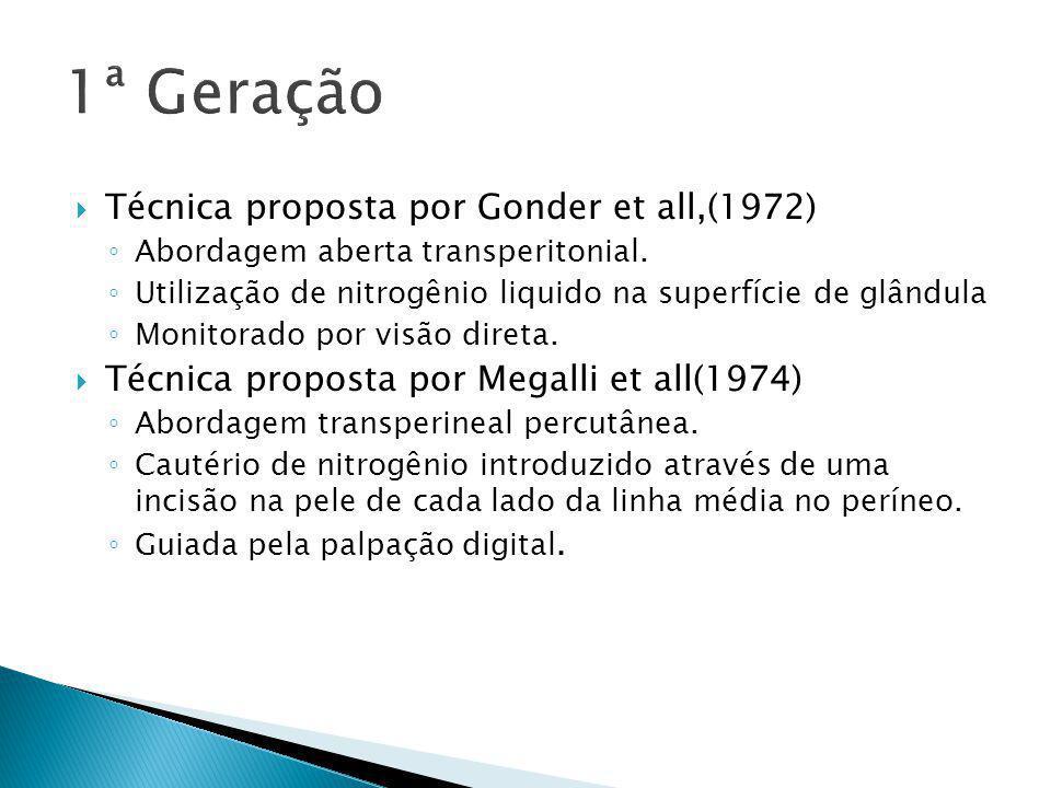 1ª Geração Técnica proposta por Gonder et all,(1972)