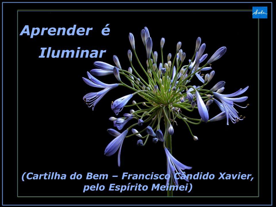 (Cartilha do Bem – Francisco Cândido Xavier, pelo Espírito Meimei)