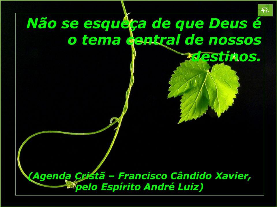 (Agenda Cristã – Francisco Cândido Xavier, pelo Espírito André Luiz)
