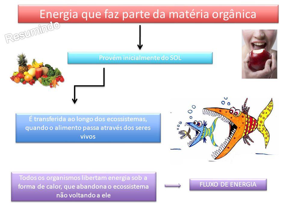 Energia que faz parte da matéria orgânica