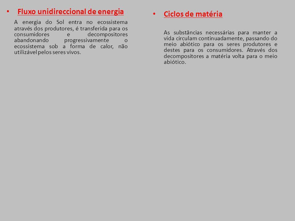 Fluxo unidireccional de energia