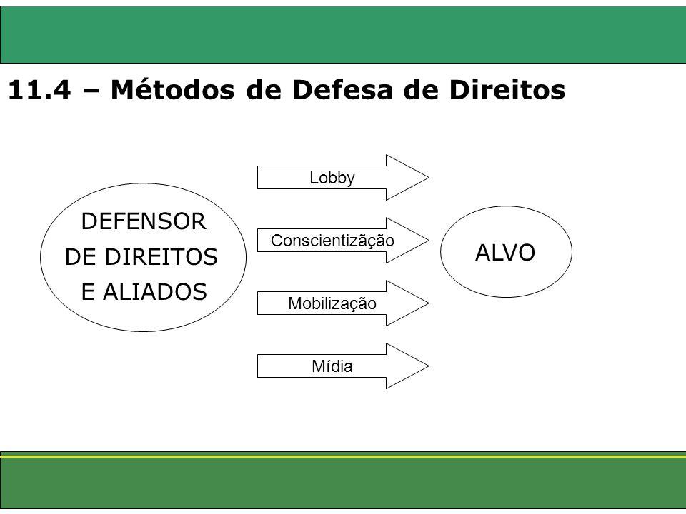11.4 – Métodos de Defesa de Direitos