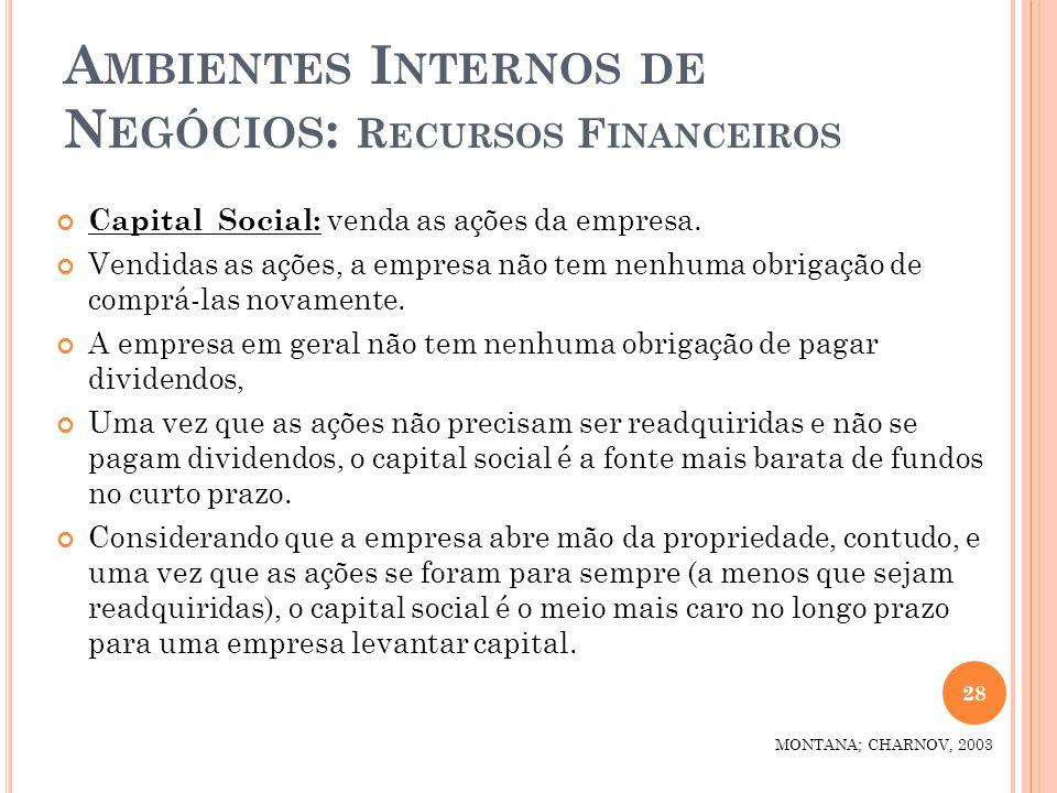 Ambientes Internos de Negócios: Recursos Financeiros
