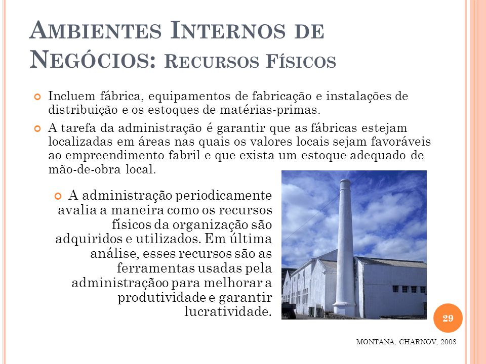 Ambientes Internos de Negócios: Recursos Físicos