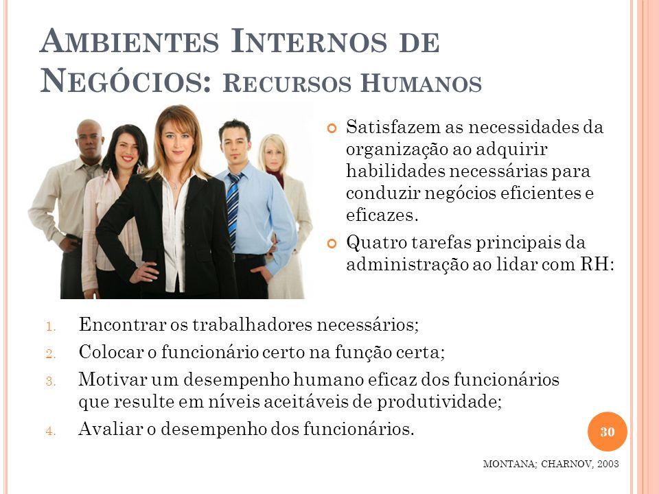 Ambientes Internos de Negócios: Recursos Humanos