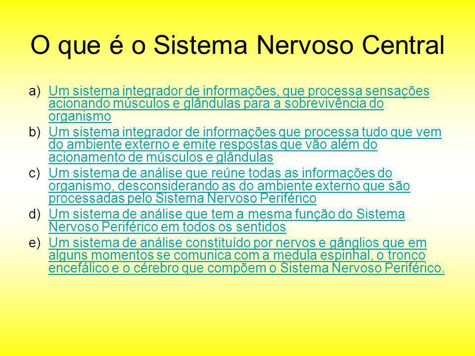 O que é o Sistema Nervoso Central