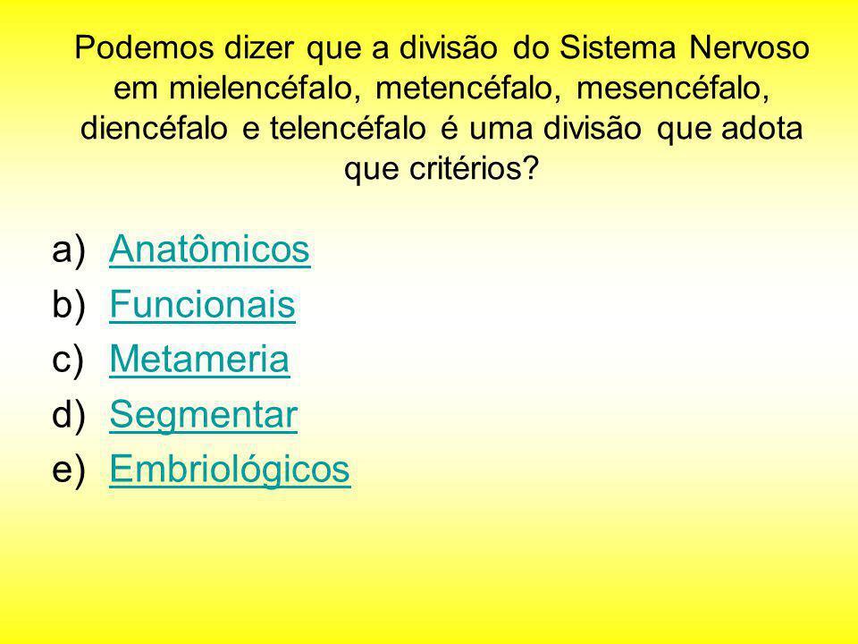 Anatômicos Funcionais Metameria Segmentar Embriológicos