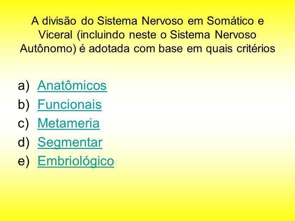 Anatômicos Funcionais Metameria Segmentar Embriológico