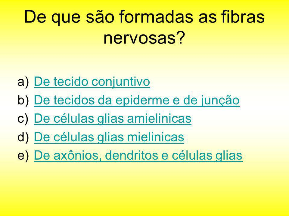 De que são formadas as fibras nervosas