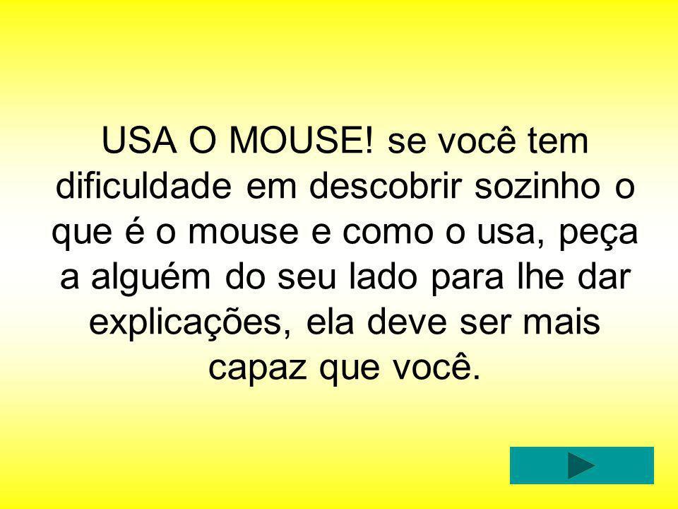 USA O MOUSE.