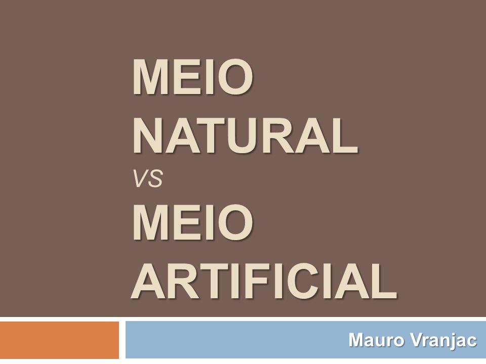Meio Natural vs Meio Artificial