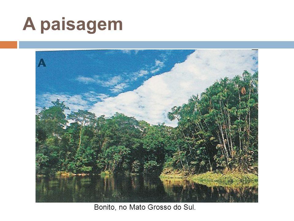 A paisagem Bonito, no Mato Grosso do Sul.