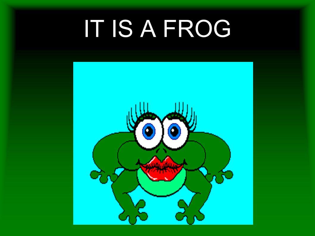 IT IS A FROG