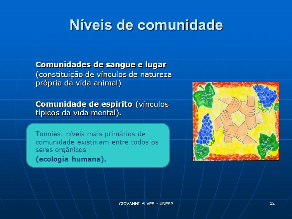 Níveis de comunidade Comunidades de sangue e lugar (constituição de vínculos de natureza própria da vida animal)