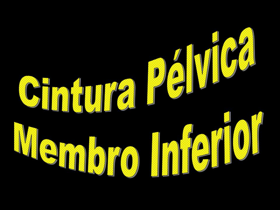 Cintura Pélvica Membro Inferior