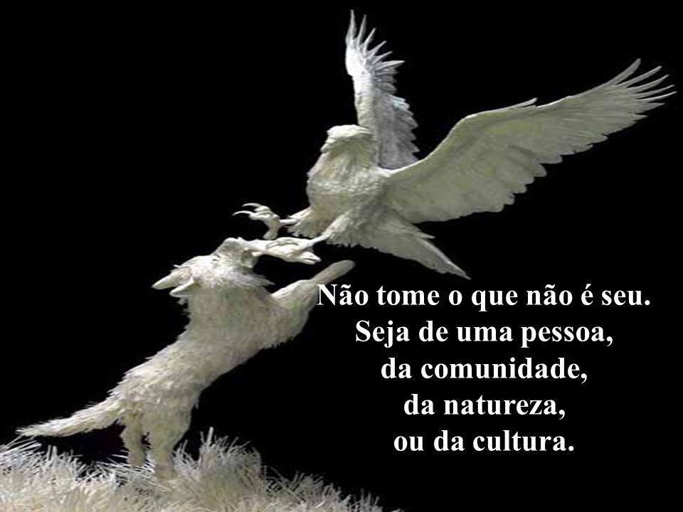 Não tome o que não é seu. Seja de uma pessoa, da comunidade, da natureza, ou da cultura.