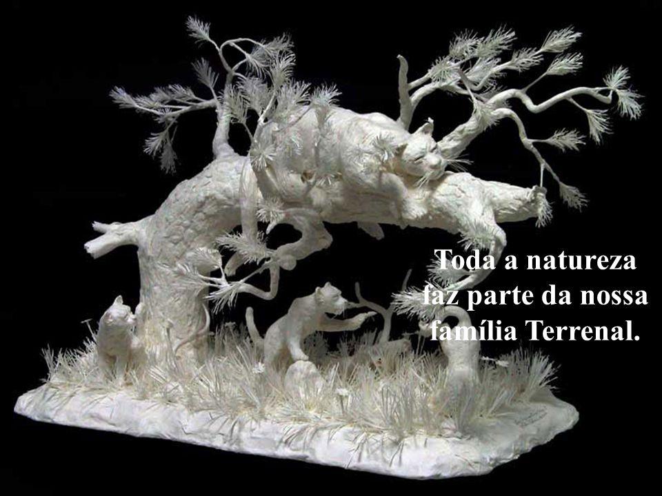 Toda a natureza faz parte da nossa família Terrenal.