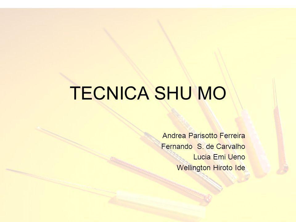 TECNICA SHU MO Andrea Parisotto Ferreira Fernando S. de Carvalho
