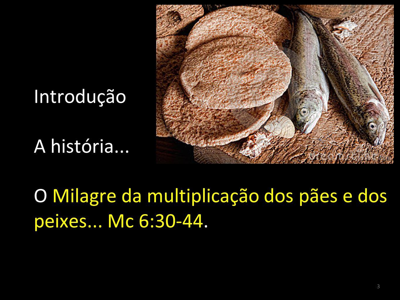 Introdução A história... O Milagre da multiplicação dos pães e dos peixes... Mc 6:30-44.
