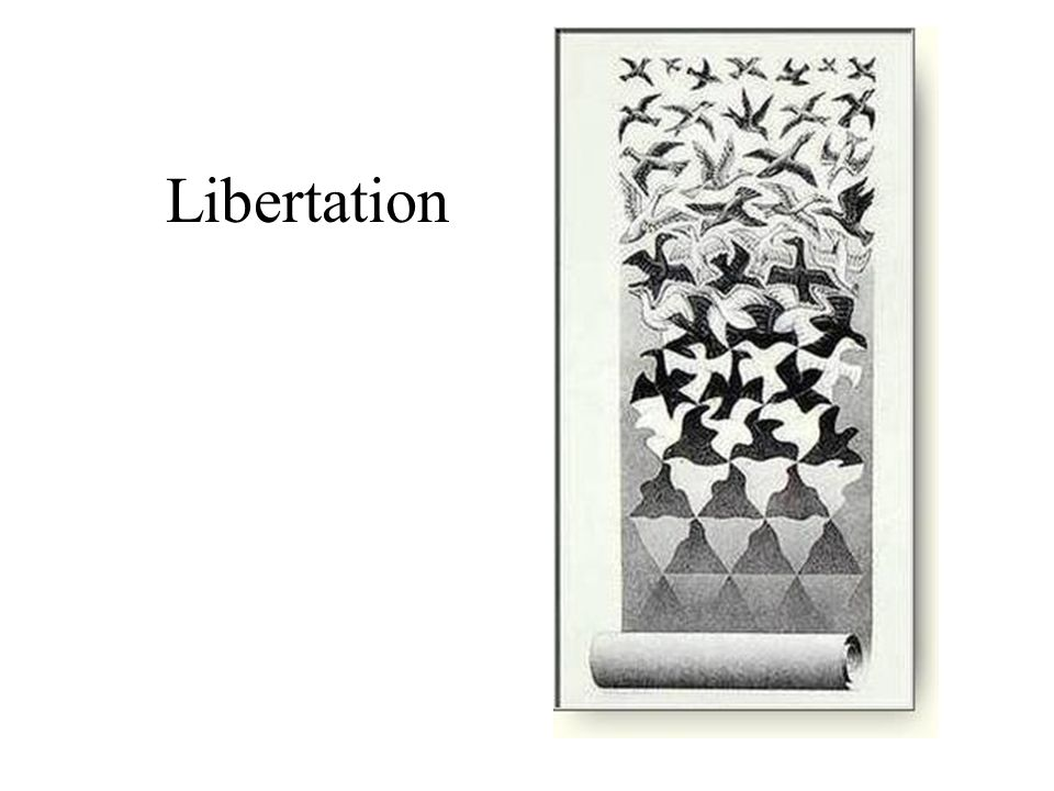 Libertation