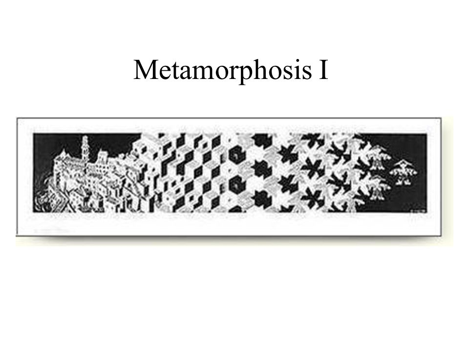 Metamorphosis I