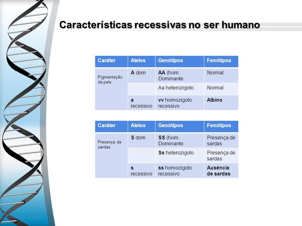 Características recessivas no ser humano